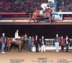 WILLMA CS (Aneto x Willa) 1996 bay mare