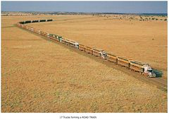 A road train with 2800 cattle