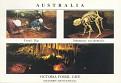 1994 FOSSIL MAMMAL