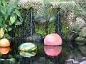 Amazonica Pool Niijima Floats05