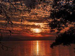 Abendsonne am Bodensee