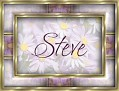 SteveDaisy-vi
