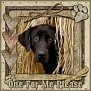 dcd-One For Me Please-In The Hay