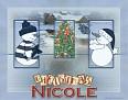 Nicole FW Mirrors SL63-vi