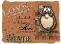 Wayne loveowl-vi