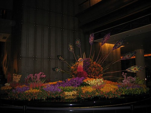 Flower show at Crown Casino