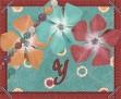 Y - Flower-UC