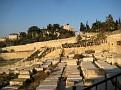 15 06 Gethsemane (2)