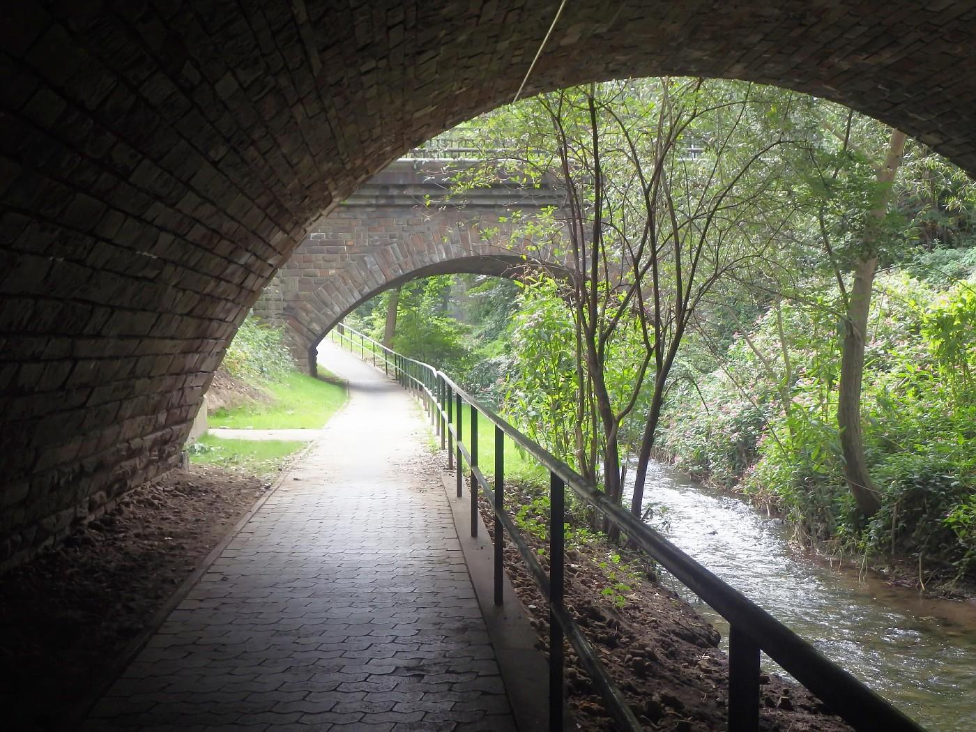 Rhine cycle track