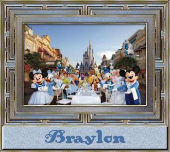 Disney Theme ParksBraylon