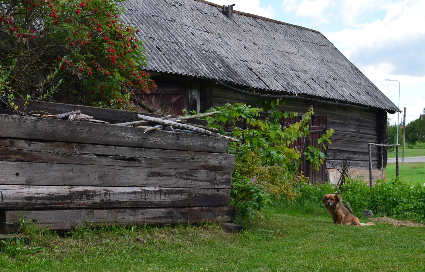 Visiting Jura