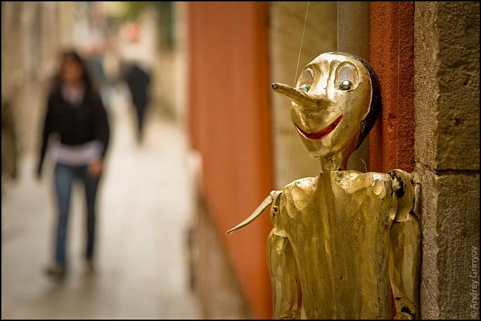 http://images47.fotki.com/v1404/photos/8/880231/6909707/Venice035-vi.jpg
