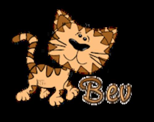 Bev - CuteCatWalking