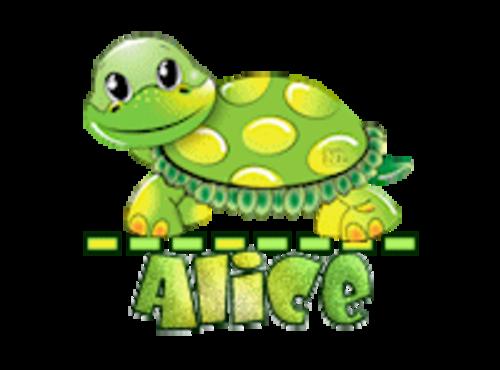 Alice - CuteTurtle