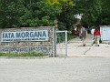 008 the Fata Morgana is a Greenhouse with many tropical plants Succulents and many caudex plants