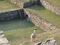 Visions of Peru (107)