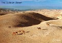 Israel - Judean Desert