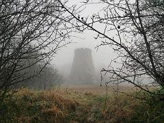 Der Stumpf im Nebel