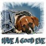 1Have a Good Eve-blujeanpup-MC
