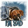 1I'm Sad-blujeanpup-MC