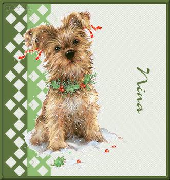 Christmas 11 41Nina