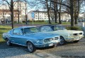 Ford Mustang -67 + Mustang -66