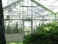 Vystava kaktusu 2005 (3)