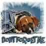 1Don't Forget Me-blujeanpup-MC