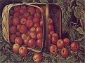 Country Apples 320x240
