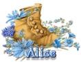 Alice - BootsNBlueFlowers
