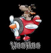 WooHoo - DogFlyingPlane