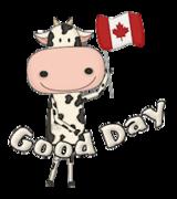 Good Day - CanadaDayCow