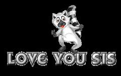 Love You Sis - RaccoonStepOnName