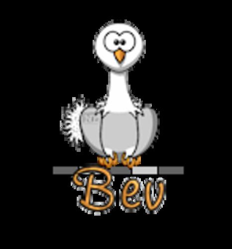 Bev - OstrichWithBlinkie