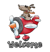 Welcome - DogFlyingPlane