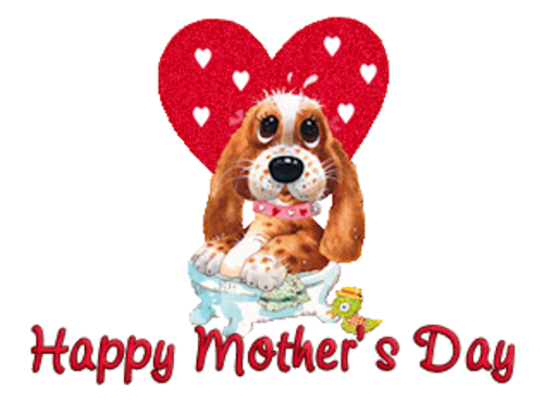 Happy Mother's Day - ValentinePup2016