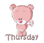 DOTW Thursday - ShyTeddy