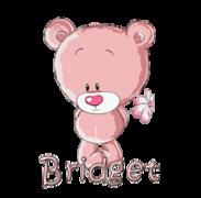 Bridget - ShyTeddy