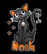 Noah - HalloweenKittySitting