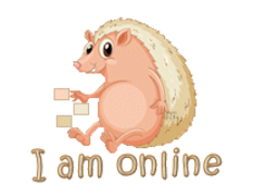 I am online - CutePorcupine