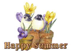 Happy Summer - BirdsAndSpringFlowers