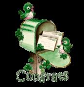 Congrats - StPatrickMailbox16