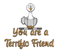 You are a Terrific Friend - OstrichWithBlinkie