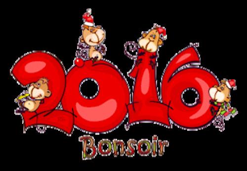 Bonsoir - 2016WithMonkeys