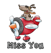 Miss You - DogFlyingPlane