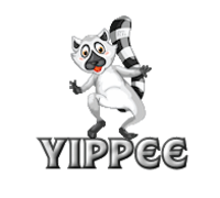Yippee - RaccoonStepOnName