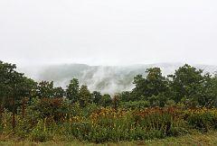 Rolling Fog #6