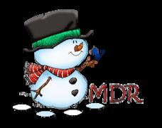 MDR - Snowman&Bird