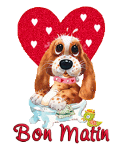 Bon Matin - ValentinePup2016
