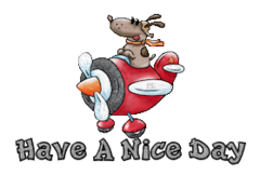 Have A Nice Day - DogFlyingPlane